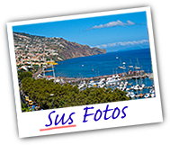 Your Photos on Madeira Live